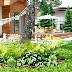 Projekt rabaty Ogród nowoczesny w skali 1:1