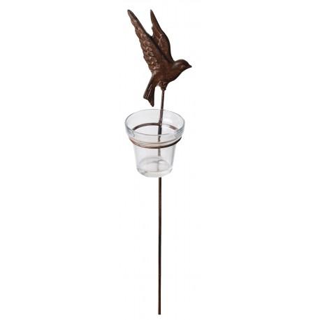 Latarenka żeliwna ptak na piku