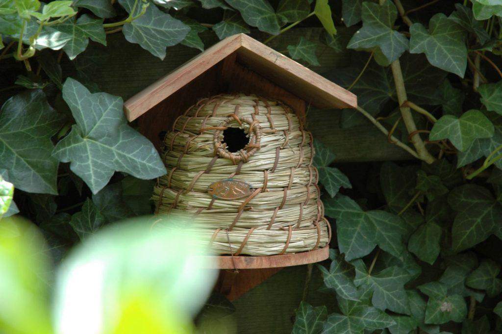 Domek, budka lęgowa dla ptaków
