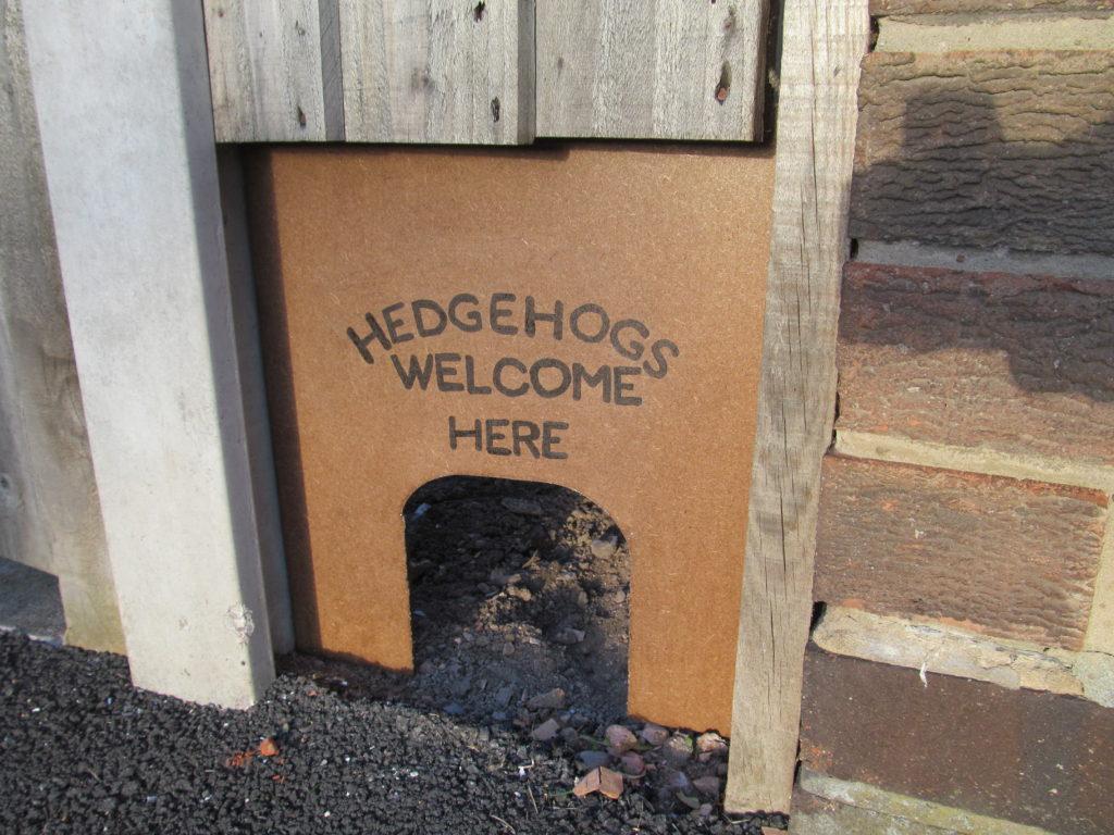 Zapewnij jeżowi wejście do ogrodu