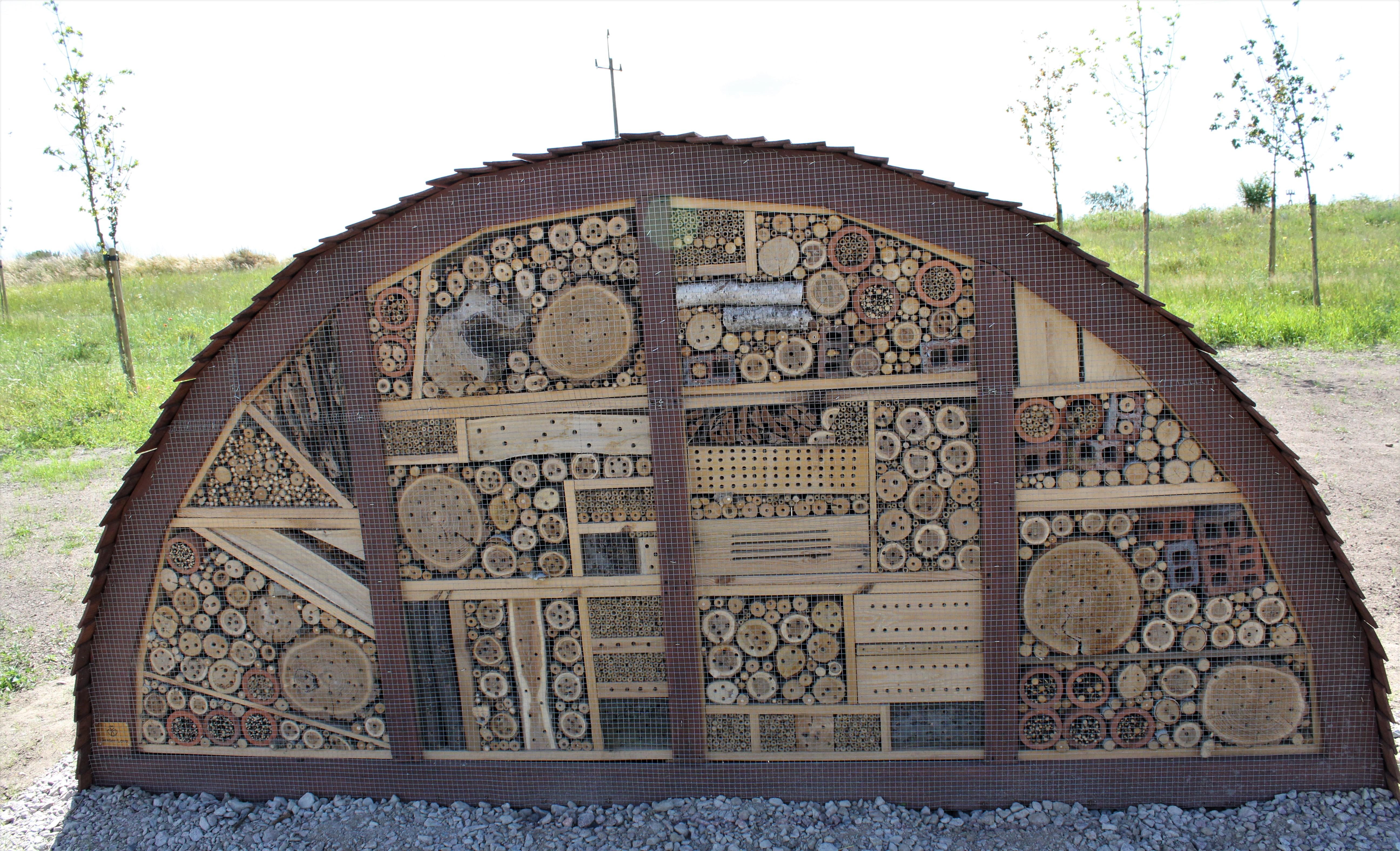 Największy hotel dla dzikich pszczół