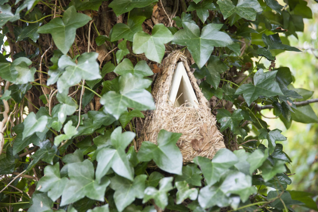 Budki lęgowe nie tylko pomagają ptakom, ale mogą być w ogrodzie także ozdobą