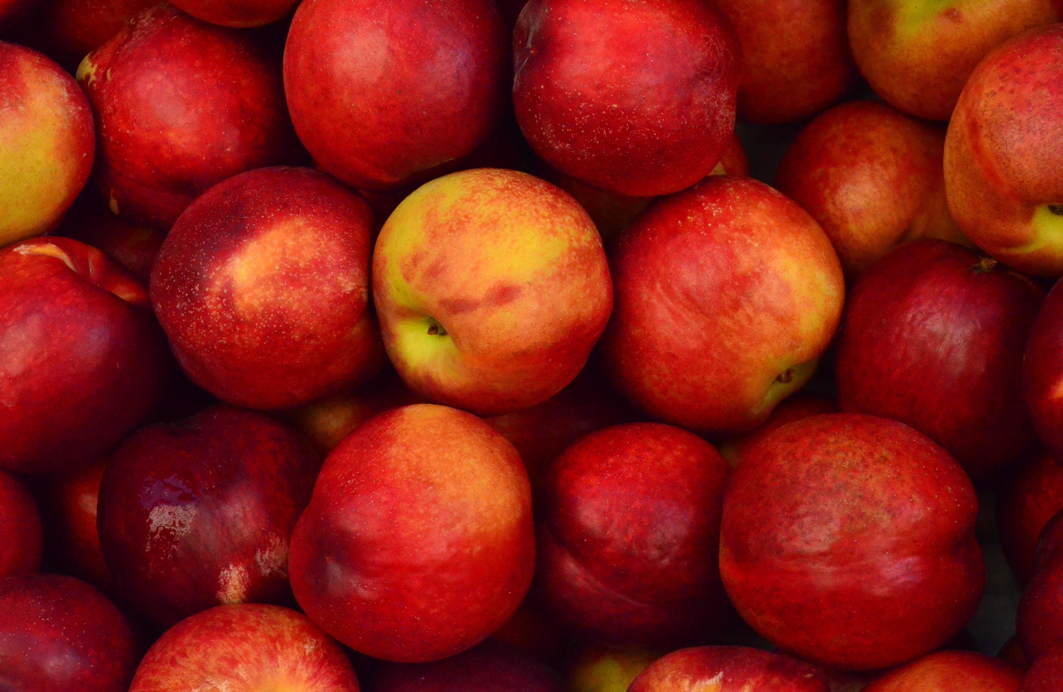 Jabłka z własnego ogrodu to idealny surowiec na tłoczone soki
