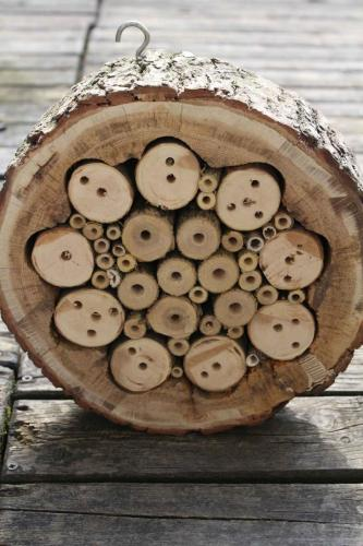 domek z plastra drewna